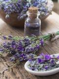 Lavender spa arrangement Stock Image
