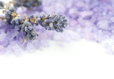 Lavender Spa Salt Stock Photography