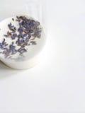 Lavender steeping in milk Stock Photo