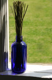 Lavender Stems Stock Image