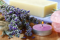 Lavender still life. stock images