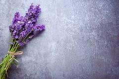 Lavender on stone Royalty Free Stock Photos