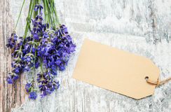 Lavender with tag Royalty Free Stock Images