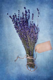 Lavender and Tag. Overhead view of a bundle of dried lavender flowers with blank tag over a textured background Royalty Free Stock Photo