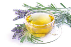 Lavender tea Royalty Free Stock Image