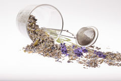 Lavender tea Royalty Free Stock Photo
