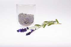 Lavender tea Royalty Free Stock Images