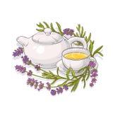 Lavender tea illustration Royalty Free Stock Photography