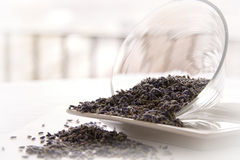 Lavender tea leaves Royalty Free Stock Images