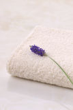 Lavender and towel Stock Photos