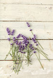 Lavender twigs on wood Royalty Free Stock Image