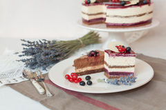 Lavender two levels cake Royalty Free Stock Photography