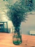 Lavender vase Stock Photos