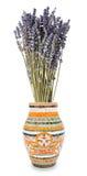 Lavender in  vase Royalty Free Stock Photos