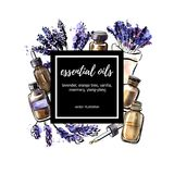 Vector watercolor illustration with Lavender essential oil bottles. Lavender. Vector illustration Essential oil. Hand drawn watercolor bottles, aromatic plants Royalty Free Stock Photos