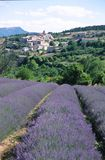 Lavender village. Lavender field in the south of France Stock Photos