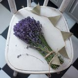 Lavender on vintage wood with old blank tag. Bouquet of lavender on vintage wood with old blank tag gift Royalty Free Stock Photos