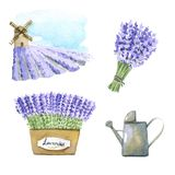 Lavender watercolor set. Set of lavender watercolor elements Stock Photography