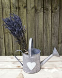 Lavender in watering can 1. Bunch of lavender in a tin watering can on a wooden surface with wood in the background. Bleach effect an space for text Stock Image
