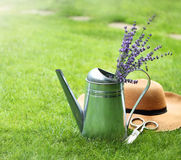 Lavender in watering can, hat and scissors Stock Photo