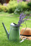 Lavender in watering can in the summer garden Royalty Free Stock Photography