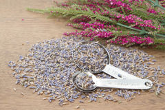 Lavender went in the measuring spoon Stock Photography
