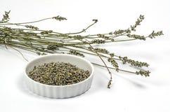 Lavender on white Royalty Free Stock Image