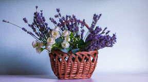 Lavender and white rose in creel. Levander and white rose in wood creel Stock Image