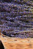 Lavender in a wicker basket Royalty Free Stock Photos