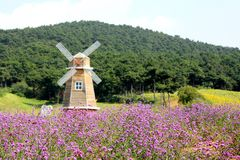 Lavender and windmill Royalty Free Stock Photos
