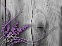 Lavender on wood Royalty Free Stock Photography