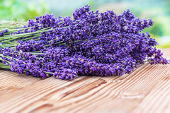 Lavender on wood Stock Image
