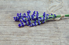 Lavender on a wooden background Stock Image