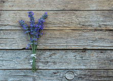 Lavender on wooden background Stock Image