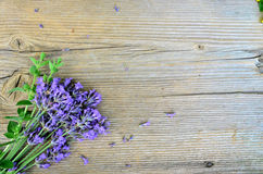 Lavender on wooden board Royalty Free Stock Photo