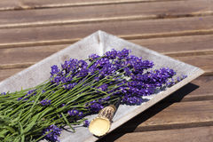 Lavender in a wooden bowl Royalty Free Stock Photography