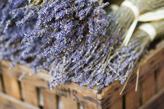 Lavender in wooden case Stock Photo