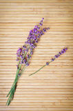 Lavender on wooden texture Stock Photography