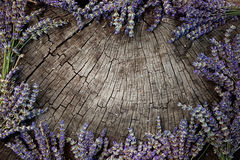 Lavender wreath Royalty Free Stock Images
