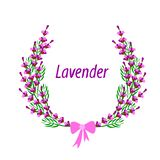 Lavender wreath on a white background royalty free illustration