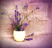 Lavender in yellow vase Stock Photography