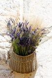 lavenders δεσμών Στοκ Εικόνες