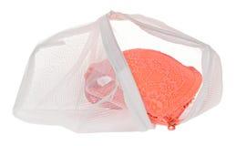 Lavez le sac pour les vêtements sensibles, chaussures, sous-vêtements, soutien-gorge Une blanchisserie photo libre de droits