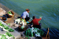 Lavez les légumes en rivière de poule Photo libre de droits