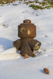 Lavished snow hydrant Royalty Free Stock Photo