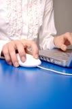 Lavorando al calcolatore 2 Immagini Stock Libere da Diritti