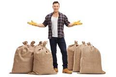 Lavoratore agricolo che sta fra i sacchi della tela da imballaggio e gesturing Fotografie Stock