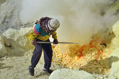 Lavoratore alla miniera di zolfo. Cratere di Kawah Ijen Immagini Stock