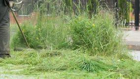 Lavoratore che falcia un'erba facendo uso di un regolatore all'aperto archivi video