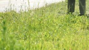 Lavoratore che falcia un'erba facendo uso di un regolatore all'aperto stock footage